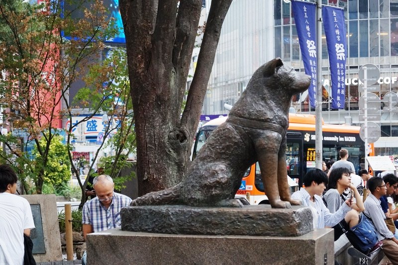 Hachiko Memorial Statue (Tokyo, Japan) – B.L.A.S.T. – Live ...